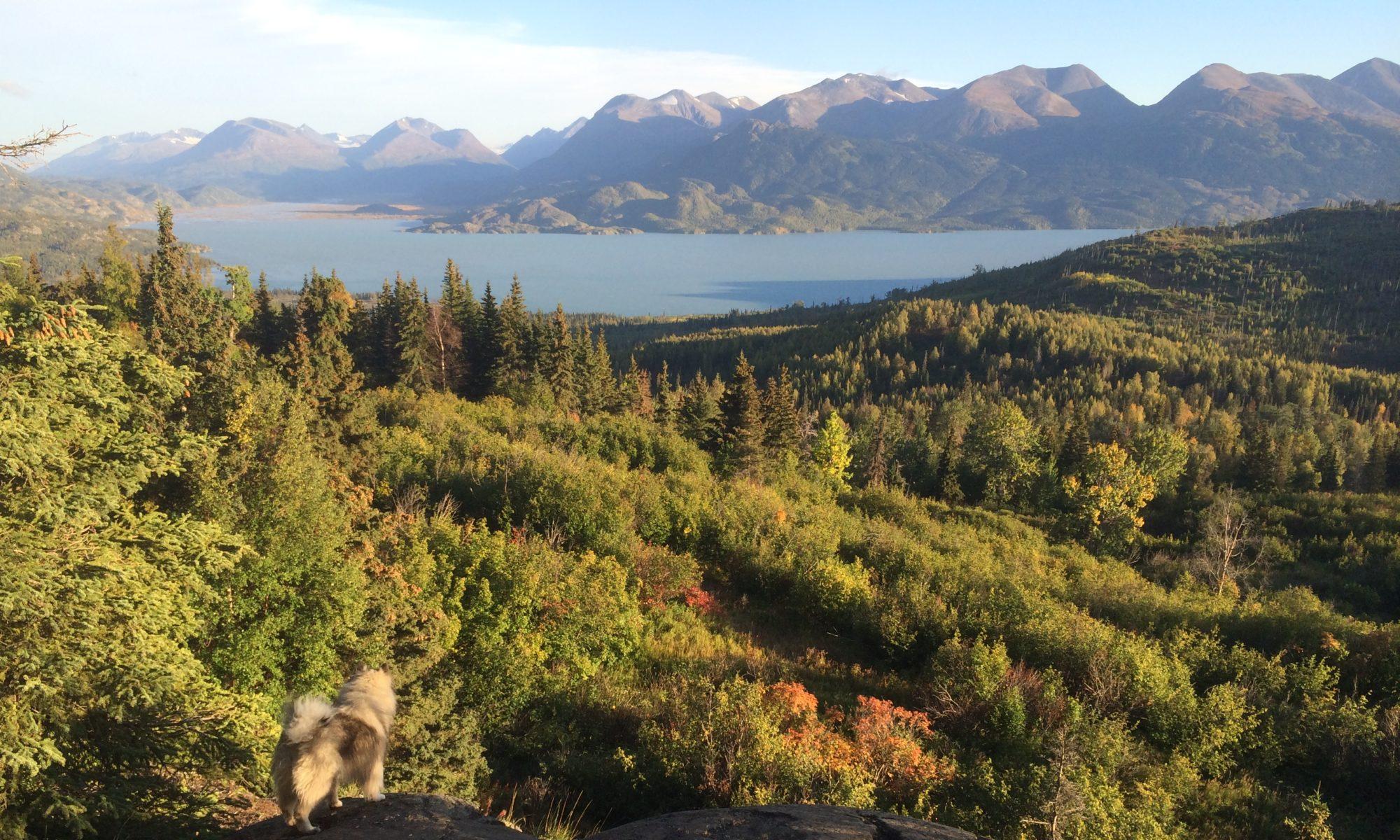 Alaska Map Cooperative